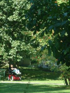 Park der Ruhrtalklinik